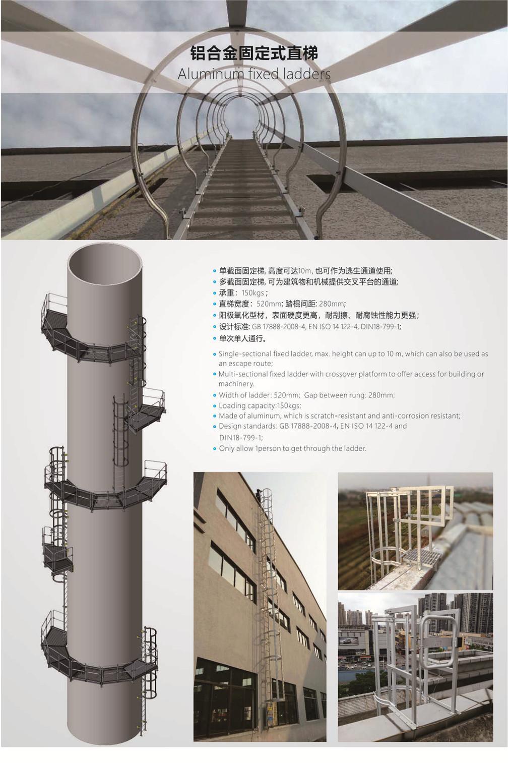 vertical access ladder