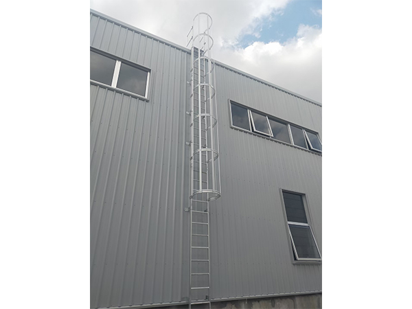 aluminum caged ladder